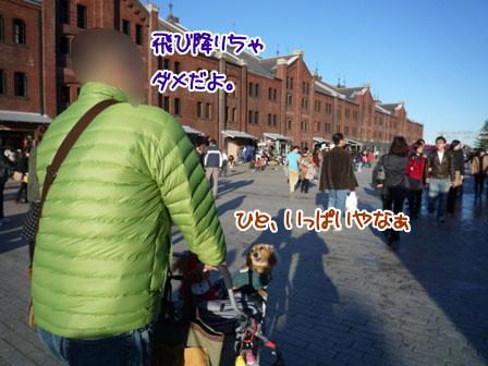 052_20111205233123.jpg