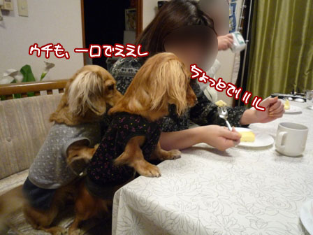 083_20111127002845.jpg
