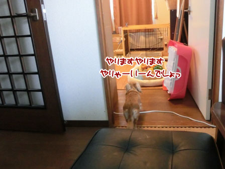 004_20130629234840.jpg