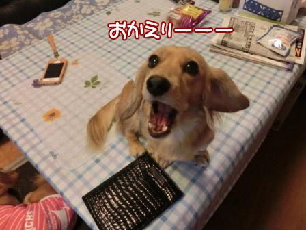 002_20121025005033.jpg
