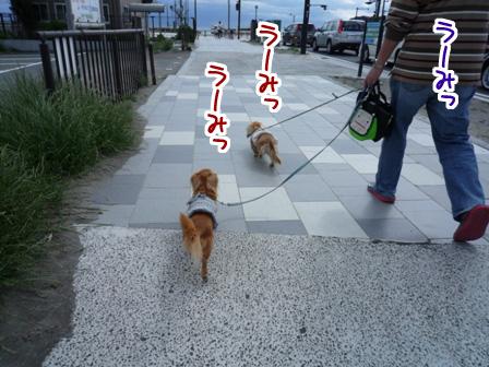 007_20110530231015.jpg