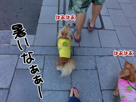 004_20120823232106.jpg