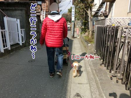 009_20130223215928.jpg