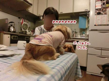 054_20120928221616.jpg