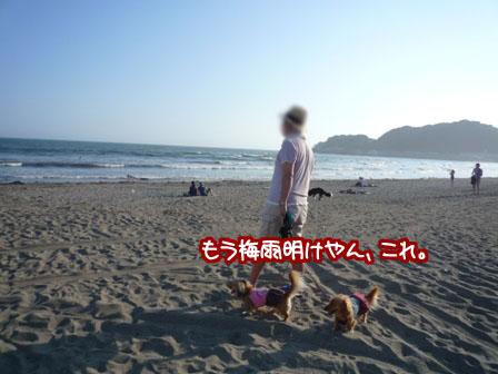 022_20110629001815.jpg