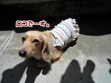 006_20110530231015.jpg
