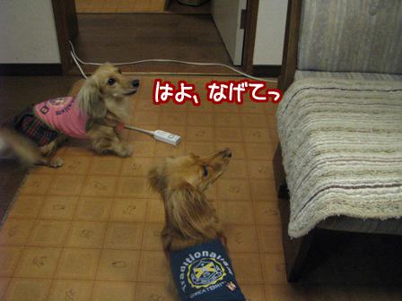 010_20110522223809.jpg