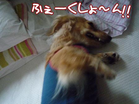 020_20110731225543.jpg