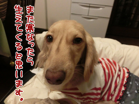 001_201404222235431ce.jpg
