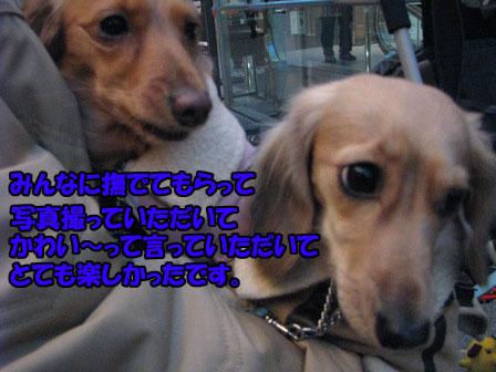 024_20101227000241.jpg