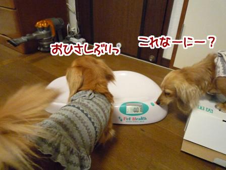 010_20110528224511.jpg