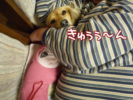 001_20110225220526.jpg