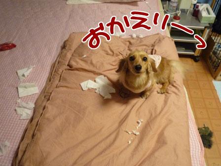 002_20120524004331.jpg