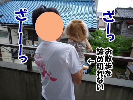004_20110529233450.jpg