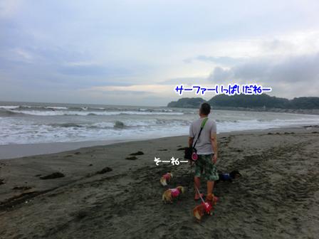 011_201507022258173c4.jpg