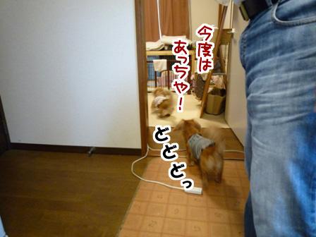 049_20110529234721.jpg