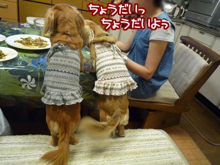 036_20110530232947.jpg
