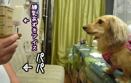 001_20110620234311.jpg