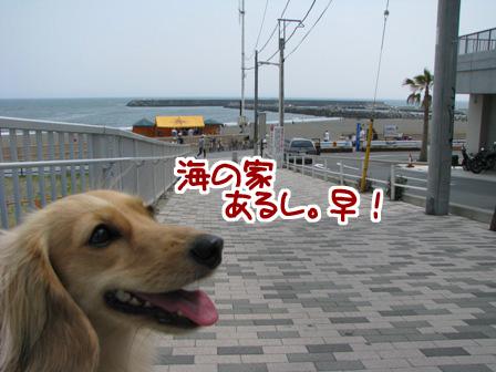 010_20110521232723.jpg