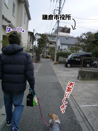 018_20120117001307.jpg