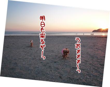 017_20110222220218.jpg