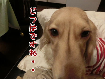 002_20140422223544ff3.jpg