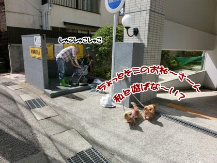 008_20130321212205.jpg