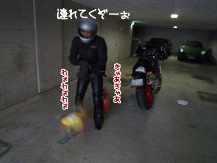 005_20111002002909.jpg
