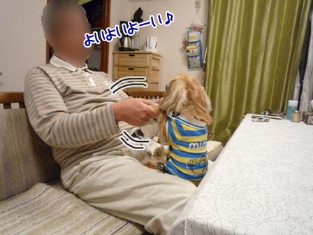 006_20111122231250.jpg