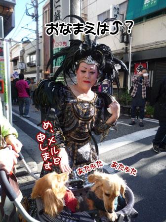 036_20111205000824.jpg
