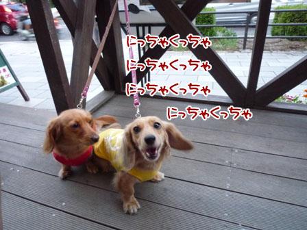 003_20110825225059.jpg