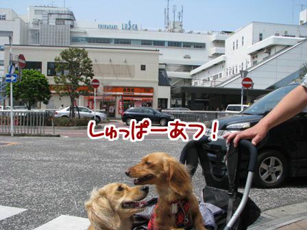 007_20110521232723.jpg
