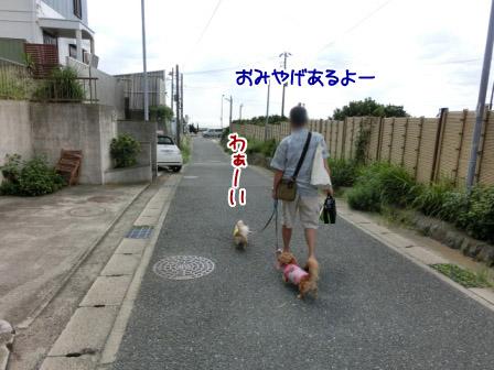 012_20120927223858.jpg