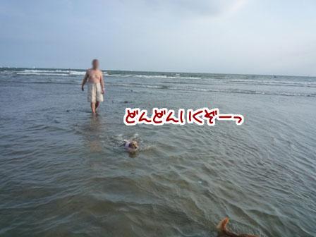 019_20110724225651.jpg