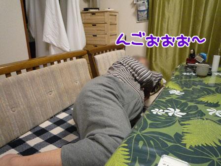 033_20110109223929.jpg