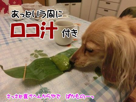 032_20121026001055.jpg
