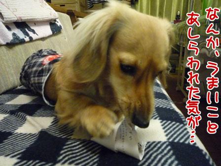 020_20110106212819.jpg