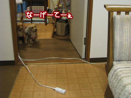 002_20110522223809.jpg