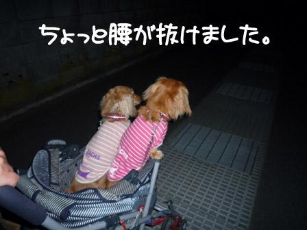 044_20120603220337.jpg