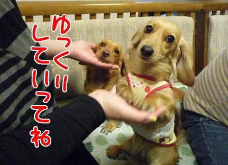 040_20110122001721.jpg