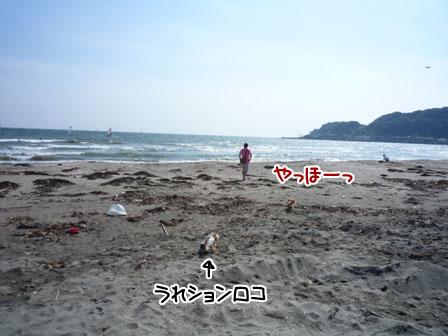 064_20120520002652.jpg