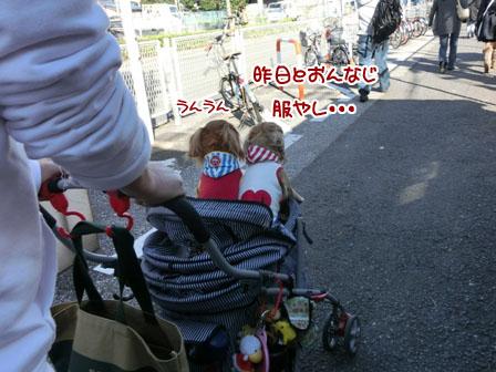 001_20121105214930.jpg