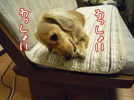009_20110127230405.jpg