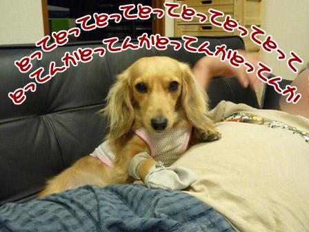 027_20120720233401.jpg