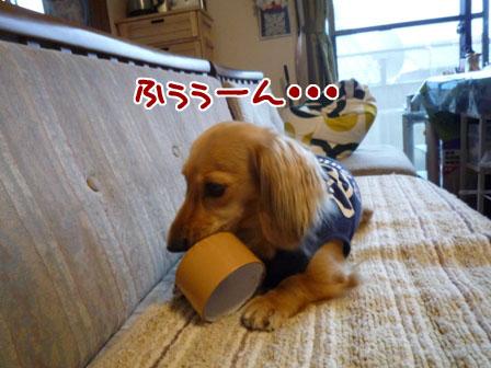 002_20110803150953.jpg