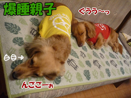 044_20111003003228.jpg
