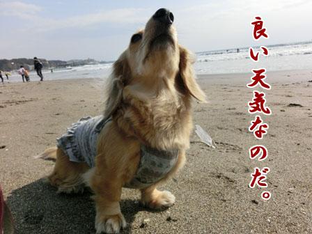 007_20130304232939.jpg