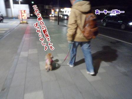 005_20111228234641.jpg