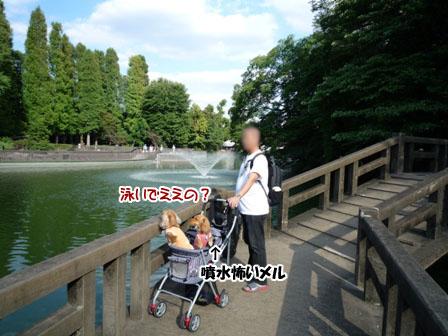 049_20110925232605.jpg