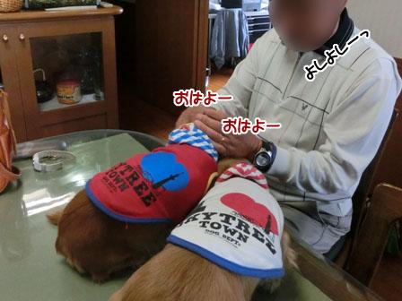 010_20121122214143.jpg